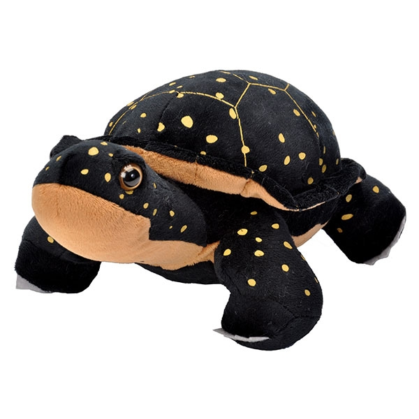 SPOTTED TURTLE PLUSH